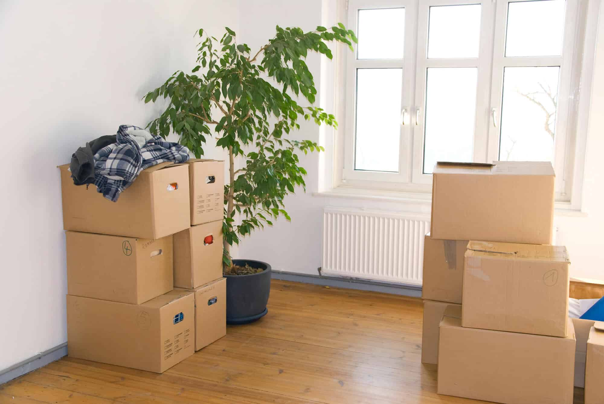 Commercial Moving services in Maui, HI