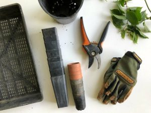 organize your tools when you are about to pack your gardening tools