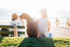 brown dog sit beside person wearing white tank top near beach