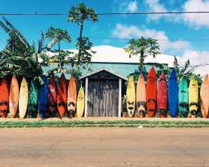 a small house surrounded by surfboards